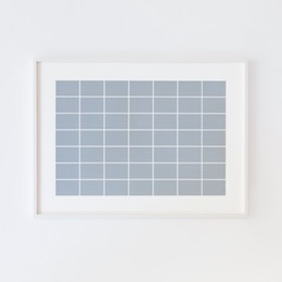 Alan Charlton49 Rectangles, 2008
