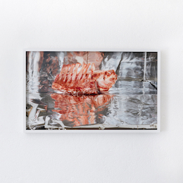 Clegg & GuttmannSmall Frozen Ribs, 2007/2013